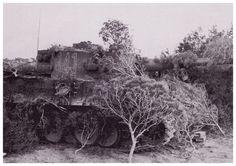 Tiger I du sPzAbt. 501 en Tunisie 1943 Panzer Iv, Reggio, Afrika Korps, Tiger Tank, Reportage Photo, Ww2 Tanks, Military Photos, North Africa, Photos Du