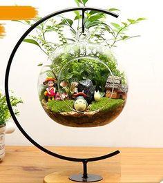 totoro terrarium - Google Search - Gardening Worlds