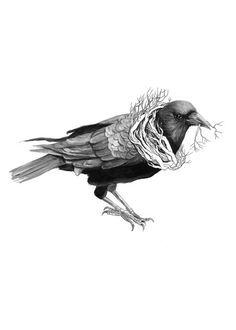 """The Gathering: The Crow // 8""""""""x10"""""""" Art Print – Forest Illustration by Polanshek of the Hills"""