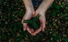 Start your new green lifestyle with these 10 easy things you can do right now to be more environmentally friendly! Take the first step toward a greener life