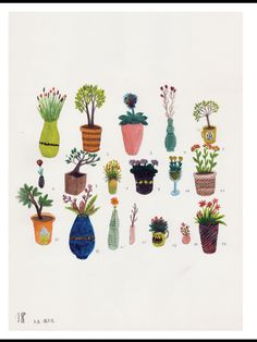 cactuses and cute plants are a late trend in youth culture