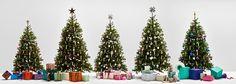 Weihnachten leicht gemacht – Die Weihnachtsbaumkollektion ab sofort im Amazon.de Home-Designshop verfügbar - http://aaja.de/2e0ZzFG