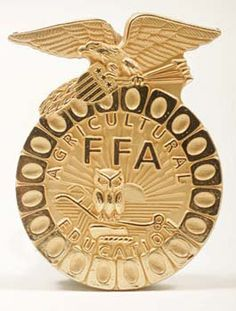 FFA state degree pin- I have one of these!