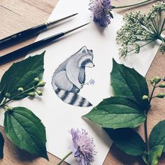 I love picking flowers and draw wild animals  but I guess you know that by now. Also: thank you for ordering that many Coloring Books  they have already been shipped. #flowers #illustration #raccoon #animals #gouache #watercolour #winsorandnewton #instaart #artwork #book #babybook #etsy #etsyseller #cute #illustrator #paint #painting #drawing #practice #naturelovers #woodland by ninastajner