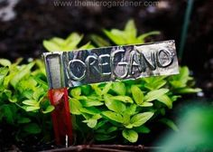 """Aluminum tape plant markers 