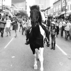 Horse galloping down 6th Street during SXSW