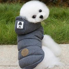 9e5bc85877 Diverse Pet Dog Clothes For Dogs Coat Jackets Thicken Pet Clothing For  Small Dog Clothes
