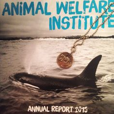 Did you know each IMAD Jewelry purchase supports the Animal Welfare Institute in Washington, DC? #IMAD #MakeADifference