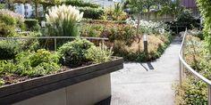 Garten für Menschen mit Demenz Chur, Arch, Landscape, Plants, Dementia, Environment, Nursing Care, People, Garten