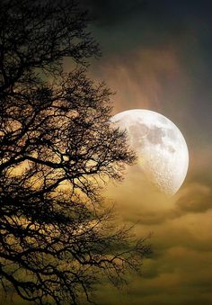 """a pale ghost of the full moon appeared above Salem, waiting to glow brilliant in the velvet black hiding just beyond the twilight."""" ~Amber Newberry, One Night in Salem Moon Pictures, Nature Pictures, Beautiful Pictures, Beautiful Artwork, Shoot The Moon, Moon Photography, Good Night Moon, Beautiful Moon, Fantasy Landscape"""