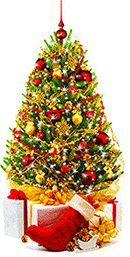 christmas-tree-many-lights