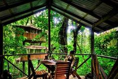 8 Tree Houses We Can't Wait To Book
