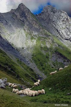 Lescun, Les Pyrenees, France   | Flickr - Photo Sharing!