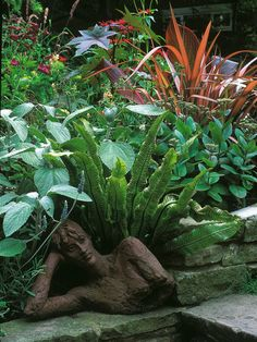Jungle Fever: The Tropical Garden.... Filled with large-leaved and colorful plants, these exotic gardens would make Tarzan feel right at home.