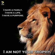 I am not your trophy.
