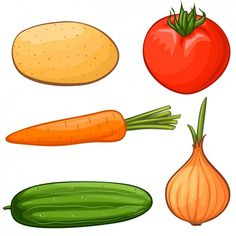 Improve Performance With Vegetables Drawing For Kids, Painting For Kids, School Board Decoration, Food Clipart, Cake Clipart, Educational Activities For Preschoolers, Vegetable Drawing, Vegetable Pictures, Autism Learning