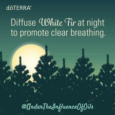 Combine Douglas Fir Wild Orange & Lemon or Bergamot oil in your diffuser for a blend that will freshen the air uplift the mood & promote a sense of focus. Need extra help focusing? Inhale Douglas Fir oil directly from the bottle. #healthyisthenewblack