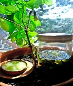 Plantain oil and salve in a compatible environment.{ From: Healthy roots happy soul } Natural Health Remedies, Natural Cures, Natural Healing, Herbal Remedies, Arthritis Remedies, Natural Treatments, Natural Medicine, Herbal Medicine, Ayurveda