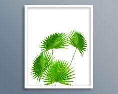 Palm Leaf Print, Palm Tree, Sabal Leaf, Sabal Tree, Sabal Palmetto, Sabal Palm, Palmetto, Palm Photography, Palm Artwork, Palm Printable