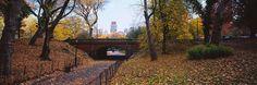 Bridge in a Park Central Park http://www.walls360.com/seasons-wall-graphics-s/2002.htm