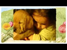 How To Detect Cancer In Dogs  (18).mp4 - WATCH THE VIDEO.    *** dogs detect cancer ***   CLICK:  to detect cancer in dogs Video credits to the YouTube channel owner