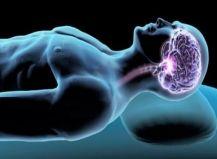 ¿El cerebro aprende mientras dormimos?: científicos afirman que se puede mejorar la memoria con los ojos cerrados