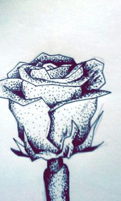Inktober day #1! White rose.
