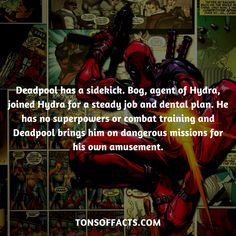 Deadpool has a sidekick. Bog, agent of Hydra, joined Hydra for a steady job and dental plan. He has no superpowers or combat training and Deadpool brings him on dangerous missions for his own amusement. Deadpool Facts, Deadpool Funny, Marvel Facts, Marvel Jokes, Avengers Comics, Marvel Avengers, Weird Facts, Fun Facts, Superhero Facts