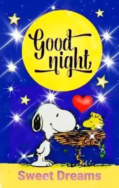 Funny Good Night Quotes, Flirty Good Morning Quotes, Good Night Messages, Good Night Prayer, Good Night Gif, Good Night Image, Good Night Greetings, Good Night Wishes, Good Night Sweet Dreams