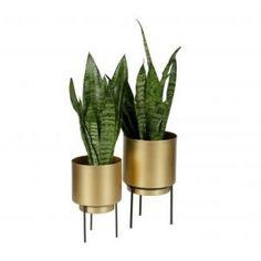 Guus blomsterpotte, M - designerhome. Home Deco, Planter Pots, Restaurant, Living Room, Plants, House, Design, Gadgets, Rooms
