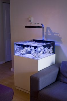 - Reef Central Online Community - TheDoogan's shallow rimless tank. – Reef Central Online Community TheDoogan's shallow rimless tank. Aquarium Stand, Aquarium Setup, Aquarium Design, Aquarium Lighting, Saltwater Fish Tanks, Saltwater Aquarium, Aquarium Fish, Coral Reef Aquarium, Marine Aquarium