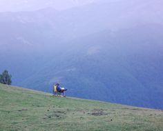 reading, nature, solitude