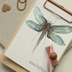Tydzień na pełnych obrotach - czas start   ▫️  ▫️  #poniedziałek #monday #lundi #poranek #morning #matin #dzieńdobry #bonjour #goodmorning #illustration #animal #ważka #dragonfly #watercolor #aquarelle #art #creative #instaart #instaartist #sztuka #malarstwo #paint #painting #peinture