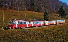 mvr-bdeh-2-4-72-74-221-212-en-chexbres MVR BDeh 2/4 72, 74, Bt222, B212 -- En Chexbres -- 12.1982 Train Suisse, Trains, Swiss Railways, Circulation, Miniature, Electric Train, Paths, Iron, Photography