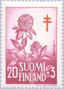 Red clover stamp from 1958, from Finland.  [red clover, Trifolium rubrum, Fabaceae]