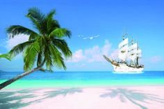 море пляж - Поиск в Google