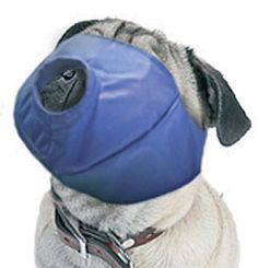 Four Flags Over Aspen Quick Muzzle - Pug Nose Large * Discover this special dog product, click the image : Dog muzzle