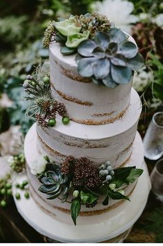 Succulent cake DIY Grown from the Earth shoot, - photo: Destiny Dawn Photography - Hochzeitsguide Pretty Cakes, Beautiful Cakes, Amazing Cakes, Cupcakes, Cupcake Cakes, Elegant Wedding Cakes, Rustic Wedding, Elegant Cakes, Wedding Cake Vintage