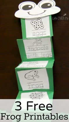 an Awesome Frog Life Cycle Unit Study These 3 frog freebies for kindergarten are a great addition to any frog unit!These 3 frog freebies for kindergarten are a great addition to any frog unit! Kindergarten Science, Teaching Science, Science For Kids, Math Literacy, Science Education, Teaching Ideas, Kindergarten Freebies, Science Books, Frog Activities