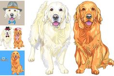 Big vector set of dogs breed Golden Retriever Smiling cream and dark Golden Retriever sitting and standing. Hipster pair of dogs: cream golden retriever Dark Golden Retriever, Black Labrador Retriever, Red Retriever, Golden Retrievers, Wolf Face Drawing, Puppy Room, Hipster Dog, Outline Illustration, Dog Vector