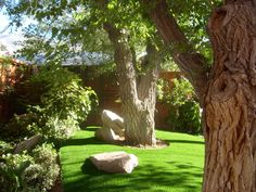 Our synthetic turf and artificial grass is engineered for use in landscaping turf. Learn more and get a free consultation from SYNLawn® San Diego.Yard Landscaped with SYNLawn (91)