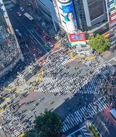 10 fun things to do in Japan, Shibuya Crossing, Ueno Park, Kawasaki Warehouse, Harajuku, Ginza, Golden Gai, Akihabara Electric Town, Gotokuji Temple, Sensoji Temple, Pompompurin Cafe