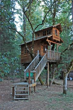 Treehouse | by Dave Gorman