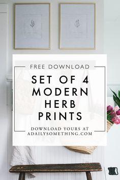 Free Modern Illustra