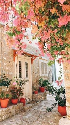 All Over The World, Around The Worlds, Grow Tent, Bougainvillea, Crete, Environment, Garden, Plants, Painting