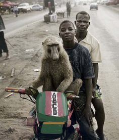 Gabon. I'd really like to know if they let him drive it