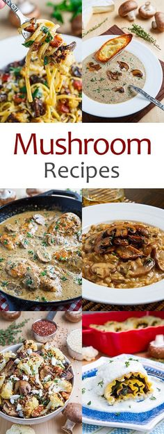 Mushroom Recipes @FoodBlogs