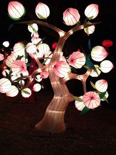 Chinese Lantern Festival at Fair Park in Dallas.
