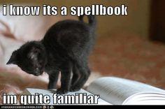 I know it's a spellbook, I'm quite familiar.
