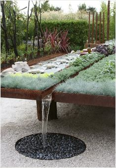 A Raised Bed with Rain Water Collector and Dining